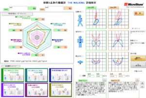 体幹2点歩行動揺計 THE WALKING コメント版 MVP-WS2-S-EIC