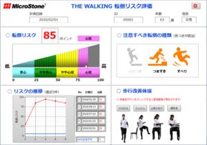 体幹2点歩行動揺計 THE WALKING 転倒リスク評価版ソフトウェア MVP-WS2-S-FR